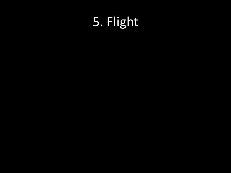 5. Flight