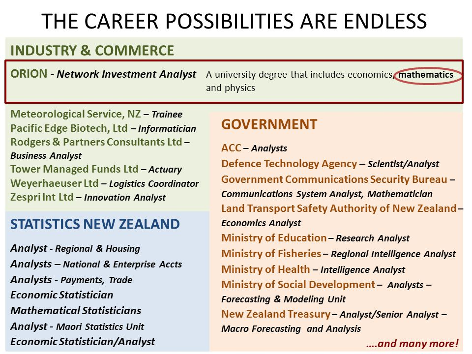THE CAREER POSSIBILITIES ARE ENDLESS STATISTICS NEW ZEALAND Analyst - Regional & Housing Analysts – National & Enterprise Accts Analysts - Payments, T