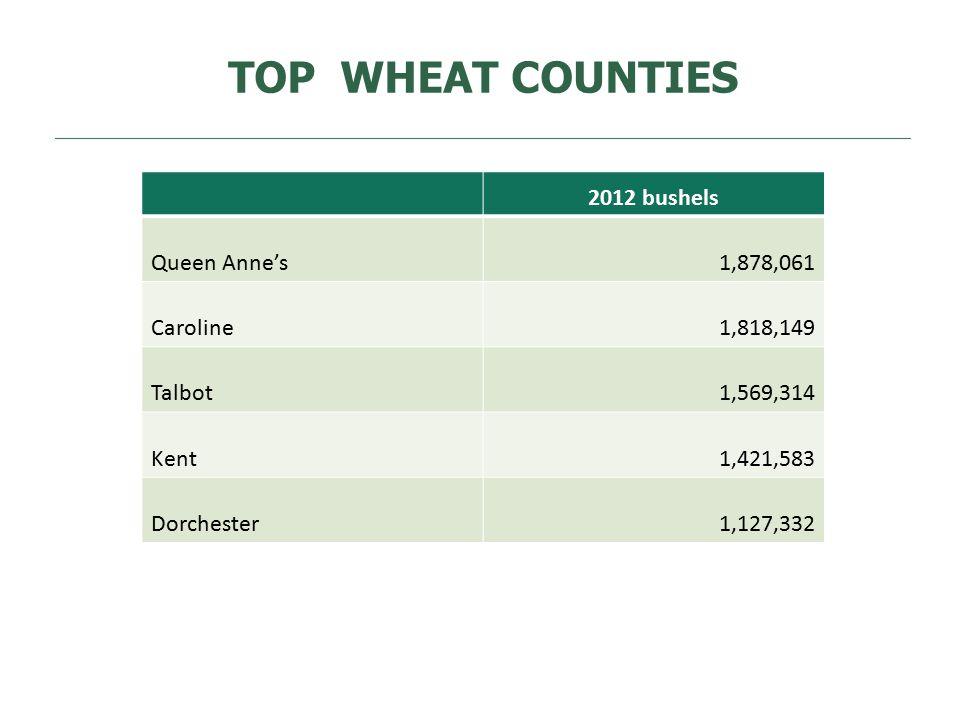 TOP WHEAT COUNTIES 2012 bushels Queen Anne's1,878,061 Caroline1,818,149 Talbot1,569,314 Kent1,421,583 Dorchester1,127,332