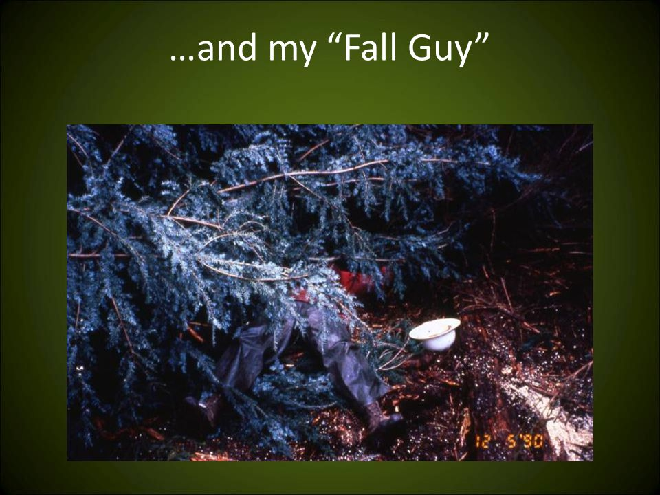 …and my Fall Guy