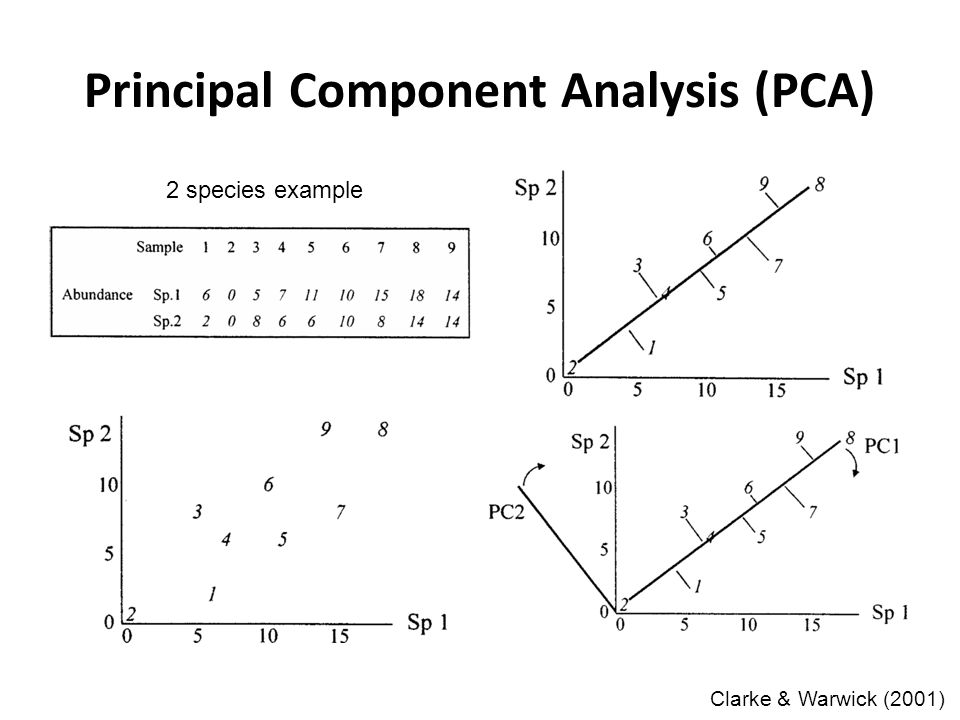 Principal Component Analysis (PCA) Clarke & Warwick (2001) 2 species example