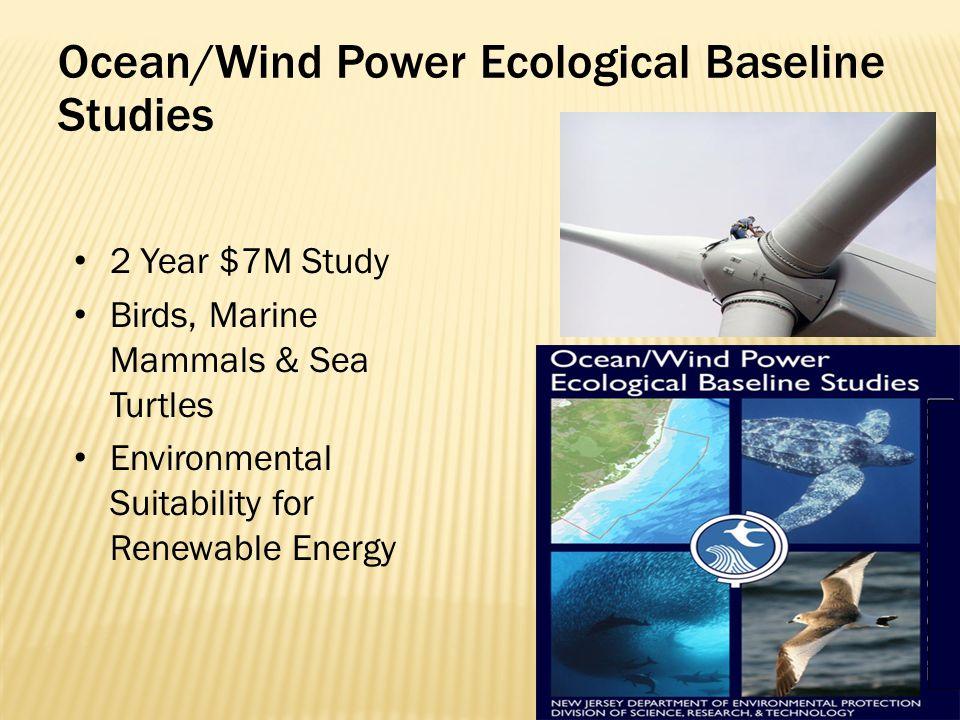Ocean/Wind Power Ecological Baseline Studies 2 Year $7M Study Birds, Marine Mammals & Sea Turtles Environmental Suitability for Renewable Energy