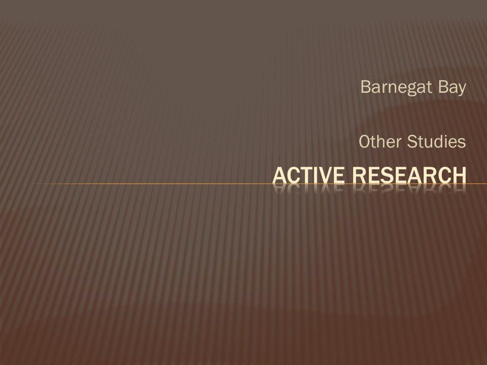 Barnegat Bay Other Studies