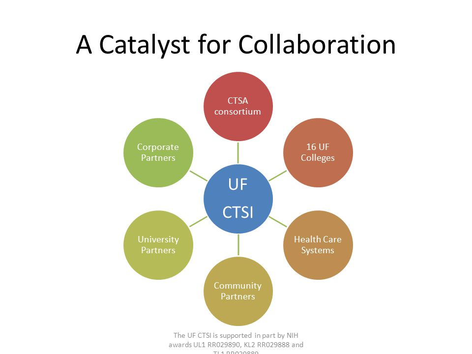 A Catalyst for Collaboration The UF CTSI is supported in part by NIH awards UL1 RR029890, KL2 RR029888 and TL1 RR029889
