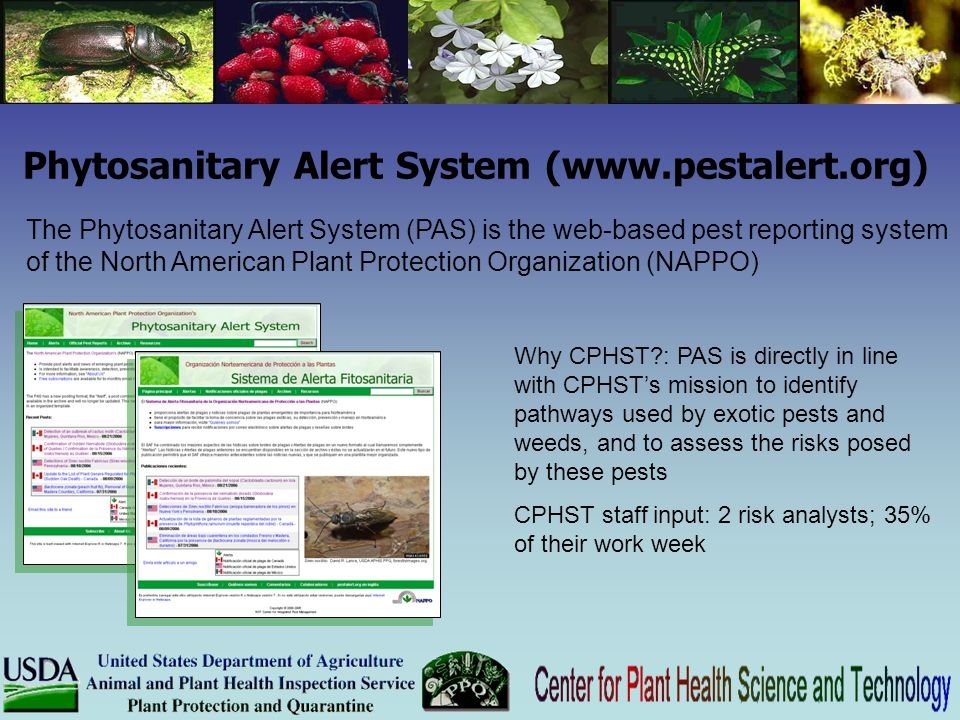 The Phytosanitary Alert System (PAS) is the web-based pest reporting system of the North American Plant Protection Organization (NAPPO) Why CPHST?: PA