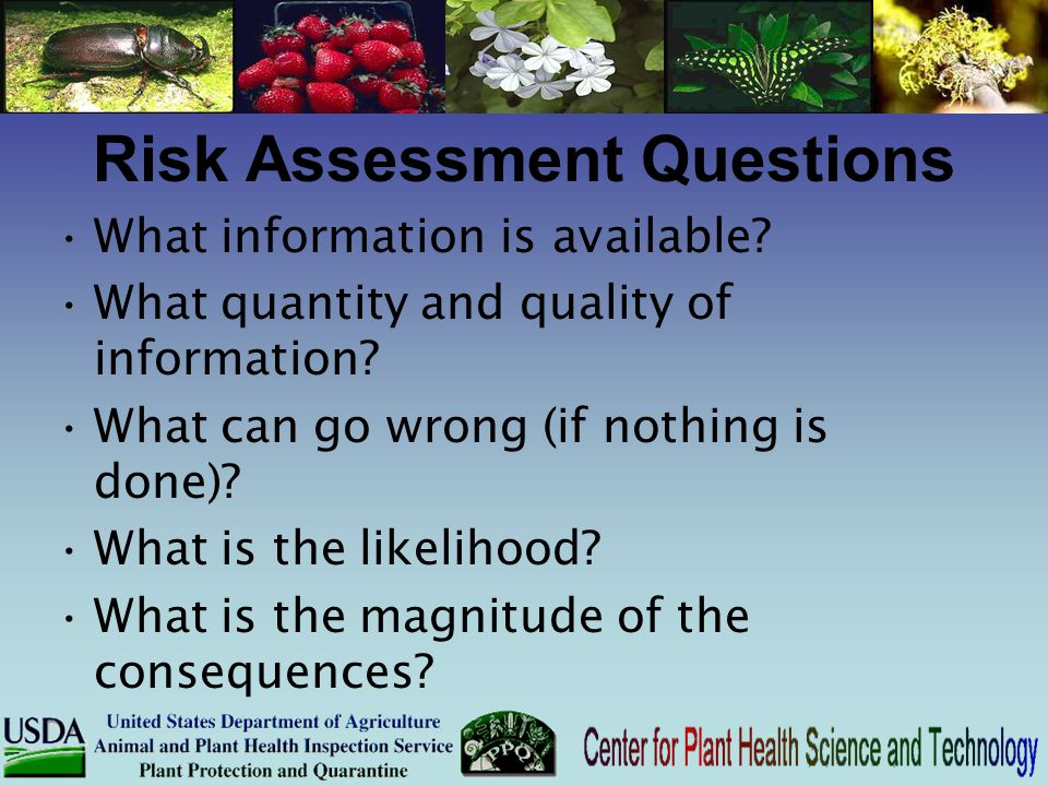 Risk Assessment Questions What information is available? What quantity and quality of information? What can go wrong (if nothing is done)? What is the