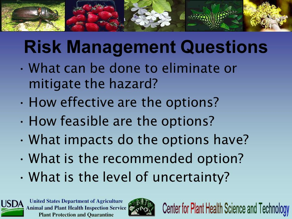 Risk Management Questions What can be done to eliminate or mitigate the hazard? How effective are the options? How feasible are the options? What impa