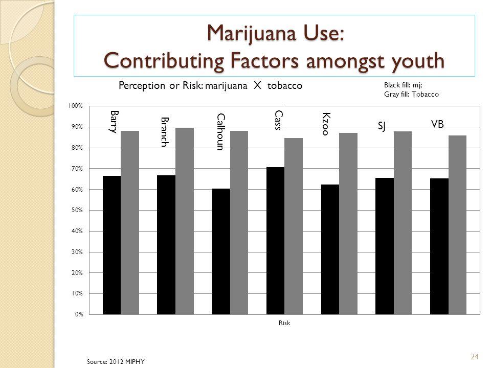 Marijuana Use: Contributing Factors amongst youth 24 Source: 2012 MIPHY