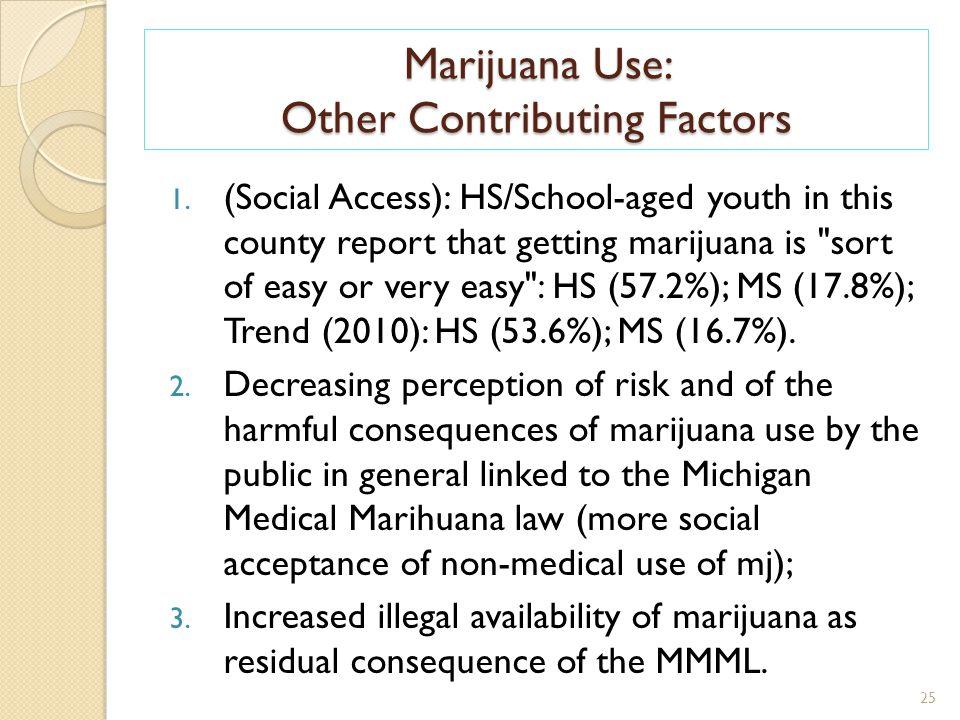 Marijuana Use: Other Contributing Factors 25 1.