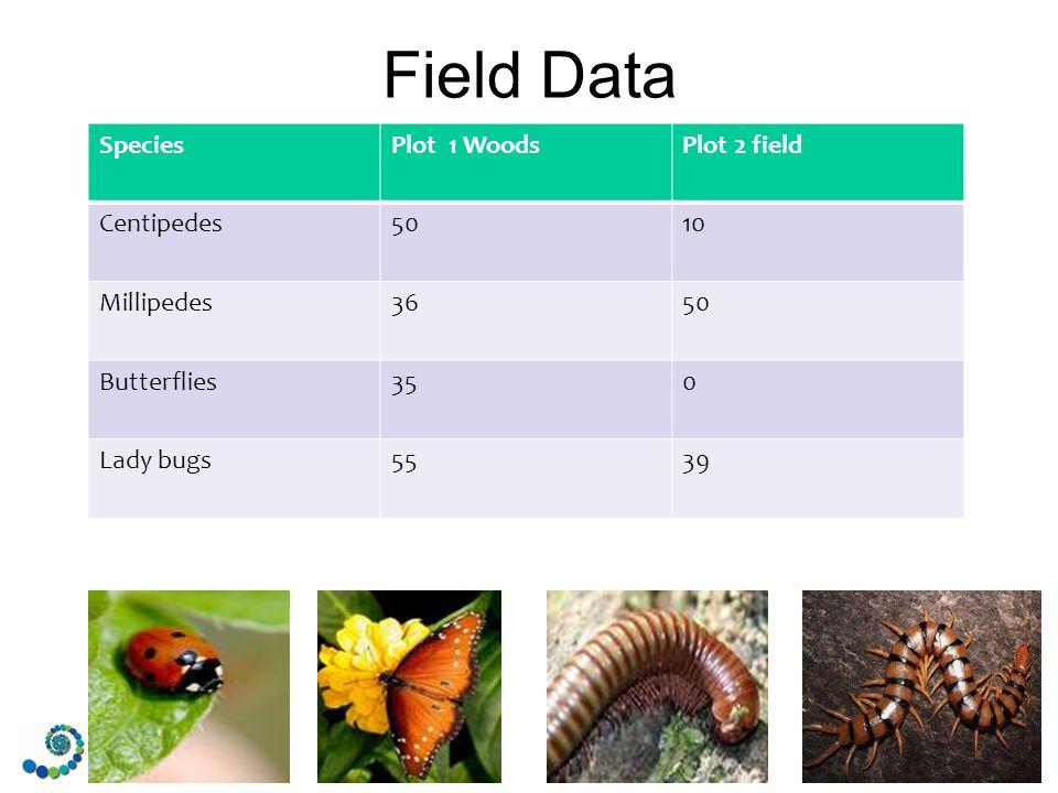 Field Data SpeciesPlot 1 WoodsPlot 2 field Centipedes5010 Millipedes3650 Butterflies350 Lady bugs5539