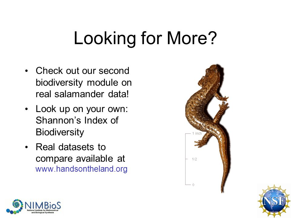 Looking for More.Check out our second biodiversity module on real salamander data.