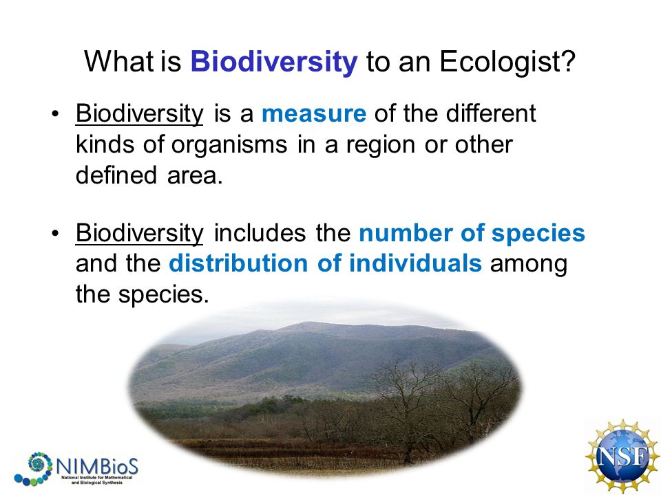 What is Biodiversity to an Ecologist.