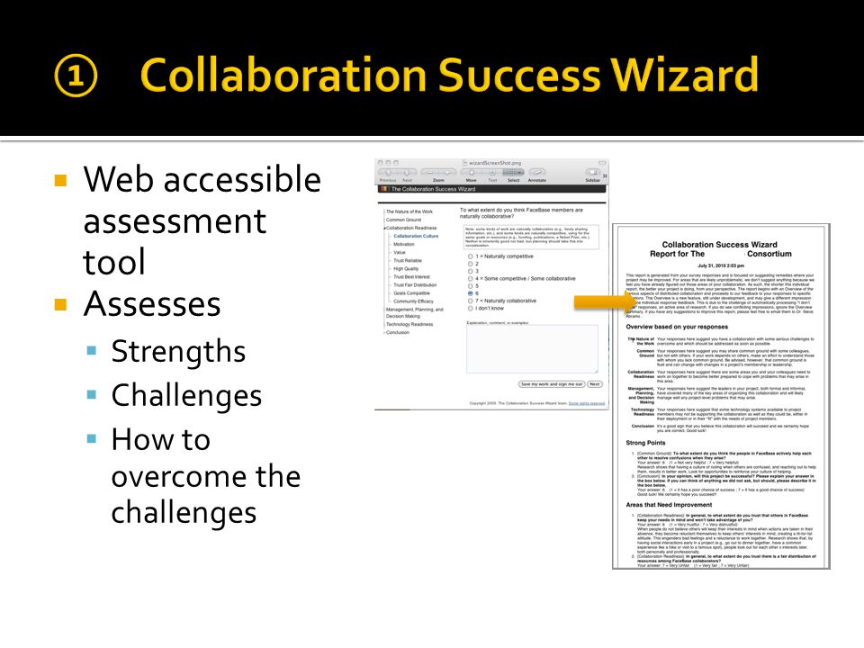  Web accessible assessment tool  Assesses  Strengths  Challenges  How to overcome the challenges