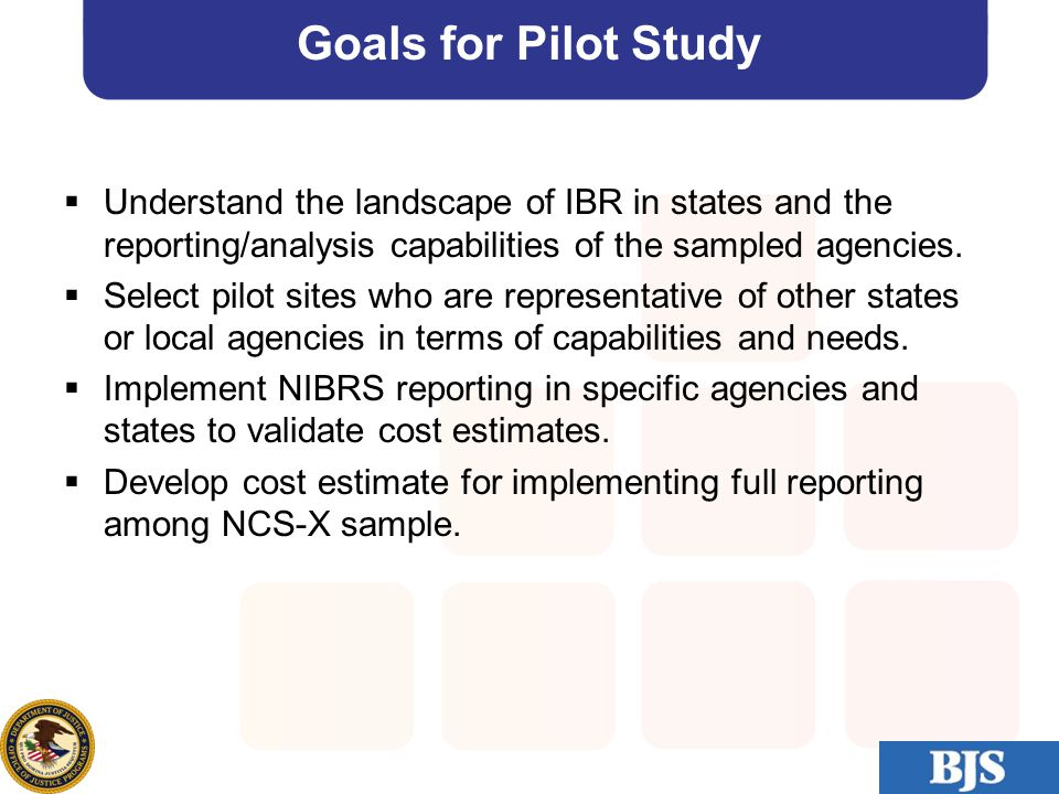 30 Goals for Pilot Study  Understand the landscape of IBR in states and the reporting/analysis capabilities of the sampled agencies.  Select pilot s