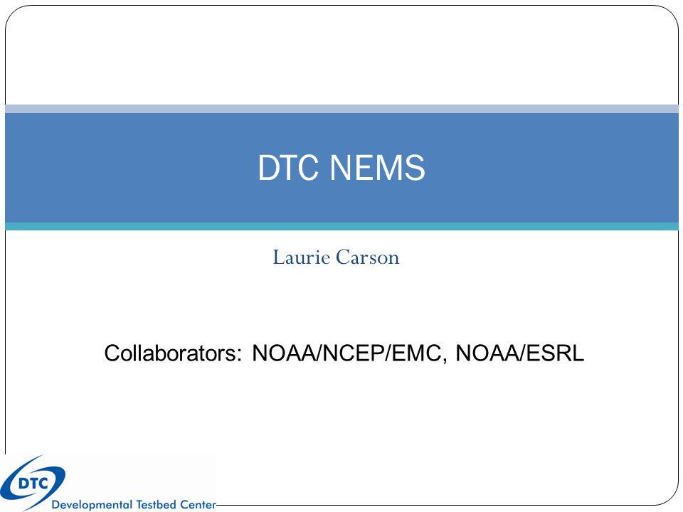 Laurie Carson DTC NEMS Collaborators: NOAA/NCEP/EMC, NOAA/ESRL