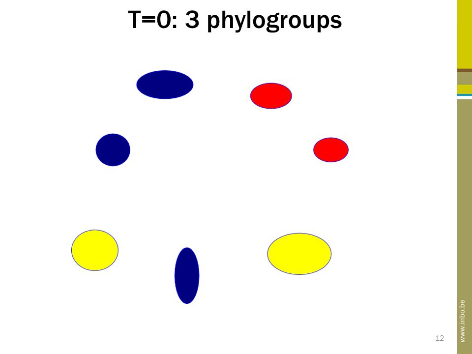 T=0: 3 phylogroups 12