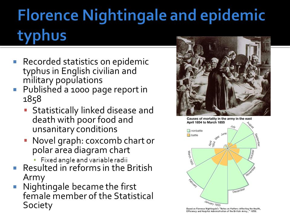  Recorded statistics on epidemic typhus in English civilian and military populations  Published a 1000 page report in 1858  Statistically linked disease and death with poor food and unsanitary conditions  Novel graph: coxcomb chart or polar area diagram chart ▪ Fixed angle and variable radii  Resulted in reforms in the British Army  Nightingale became the first female member of the Statistical Society