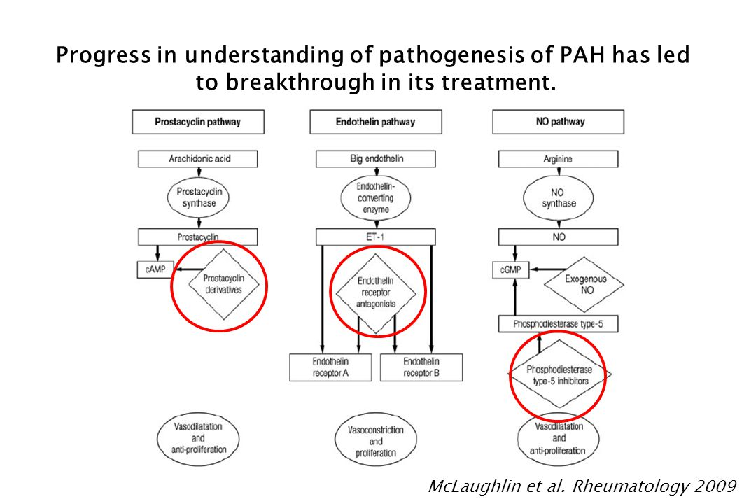 Progress in understanding of pathogenesis of PAH has led to breakthrough in its treatment.