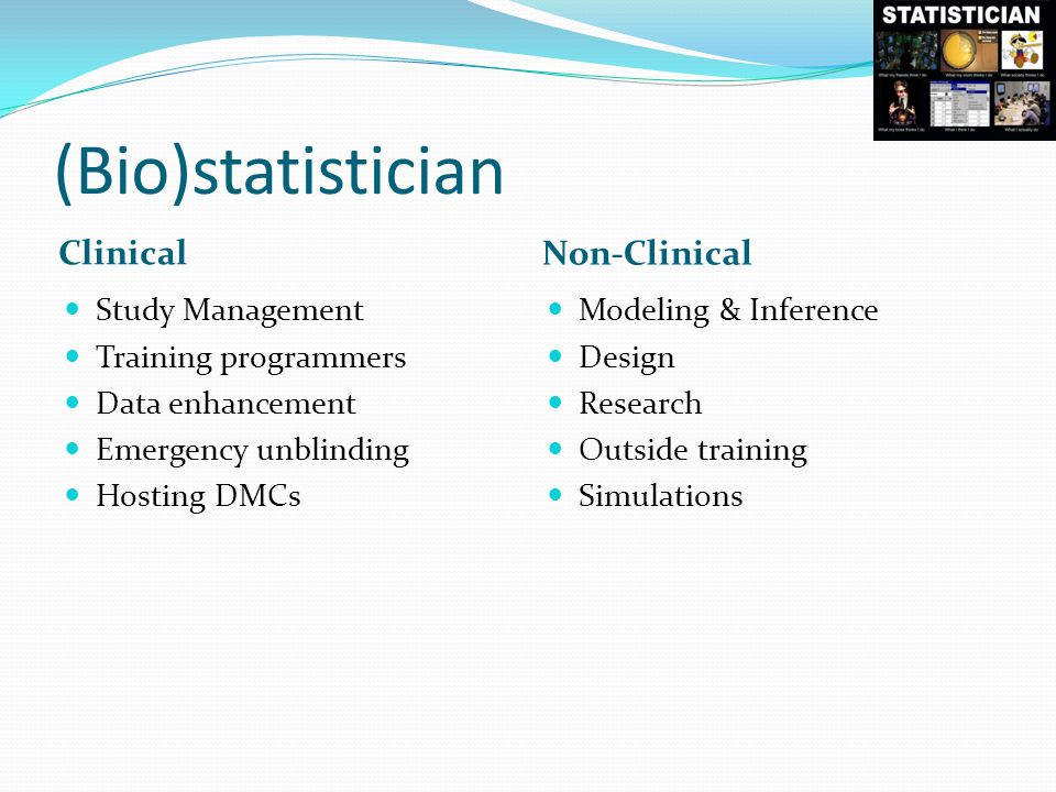 (Bio)statistician Clinical Non-Clinical Study Management Training programmers Data enhancement Emergency unblinding Hosting DMCs Modeling & Inference Design Research Outside training Simulations