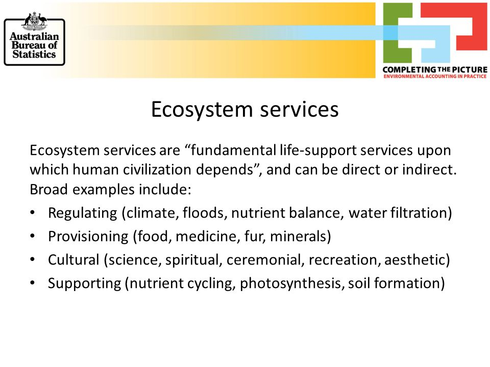 """Ecosystem services Ecosystem services are """"fundamental life-support services upon which human civilization depends"""", and can be direct or indirect. Br"""