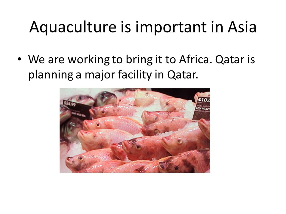 Aquaculture is important in Asia We are working to bring it to Africa.