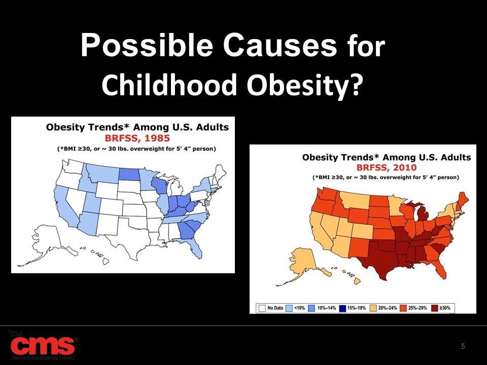 5 Possible Causes for Childhood Obesity?