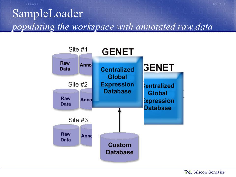 SampleLoader populating the workspace with annotated raw data