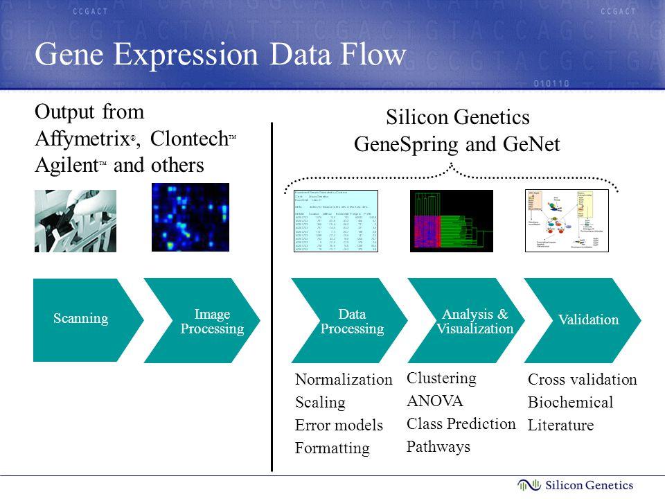 Gene Expression Data Flow Validation Scanning Image Processing Data Processing Analysis & Visualization Silicon Genetics GeneSpring and GeNet Validati