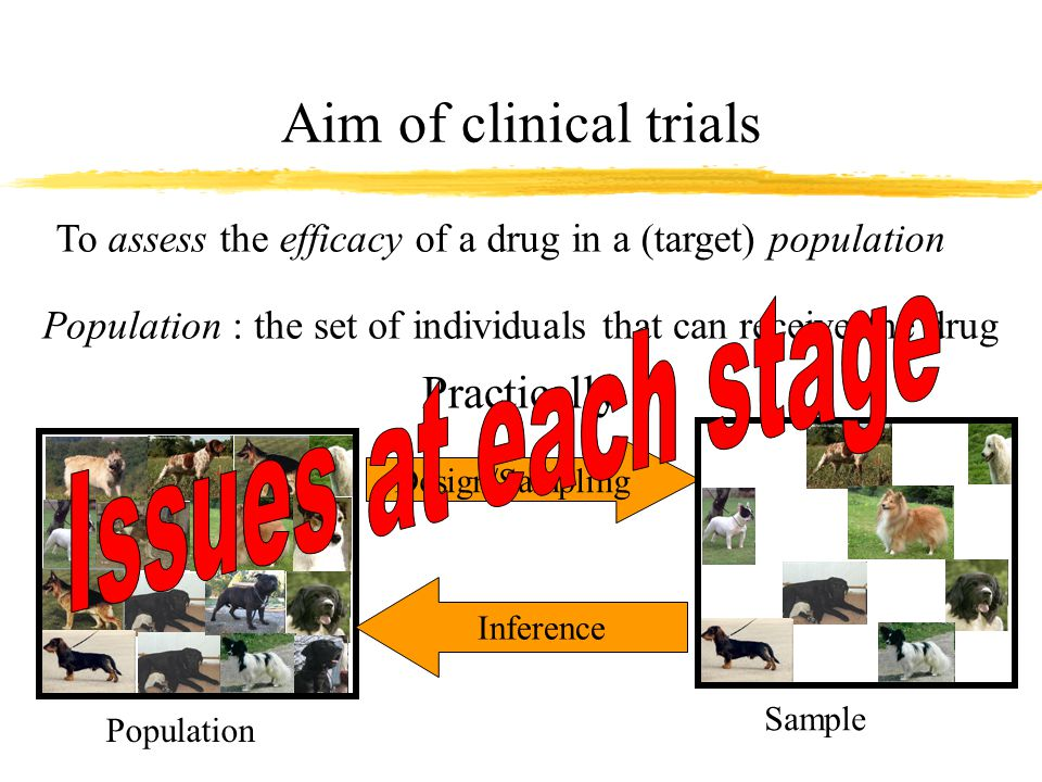 ISSUES When designing the trial When collecting data When analysing data When interpreting results