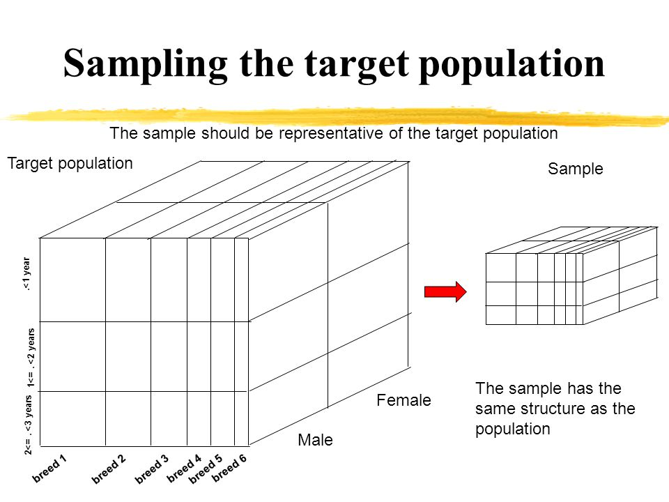 Two main ways to sample the population Randomization: leave chance make the job the percentage of the animals in each subgroup should be close to the population s one.