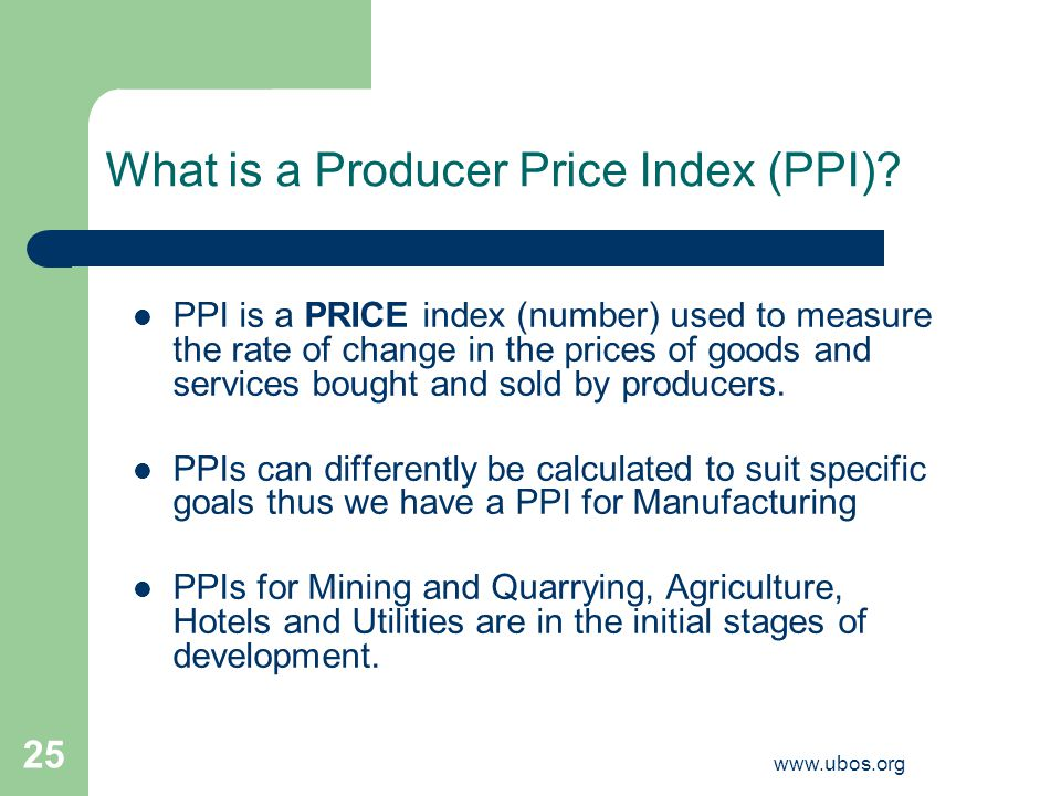www.ubos.org 25 What is a Producer Price Index (PPI).
