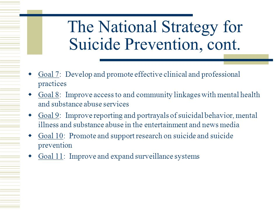 The National Strategy for Suicide Prevention, cont.