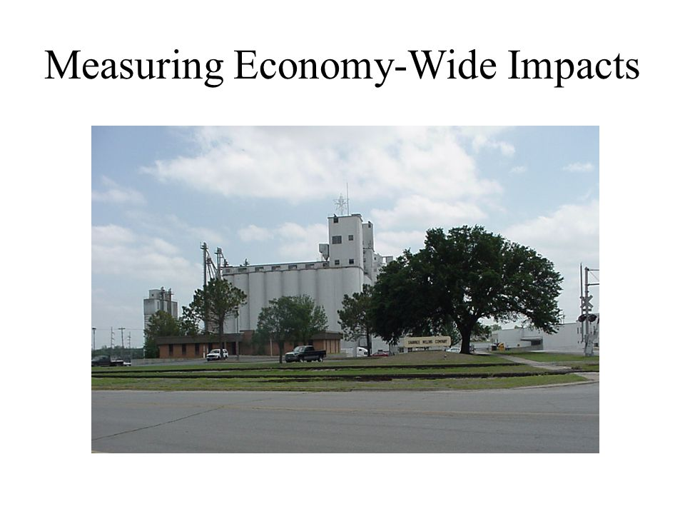 Measuring Economy-Wide Impacts