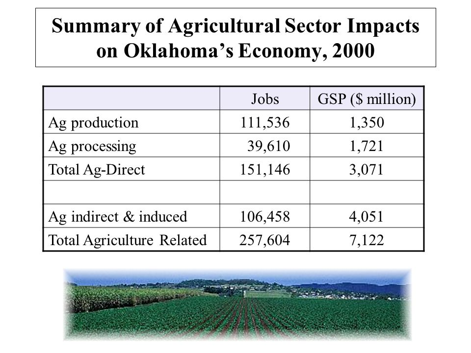 Summary of Agricultural Sector Impacts on Oklahoma's Economy, 2000 JobsGSP ($ million) Ag production111,5361,350 Ag processing 39,6101,721 Total Ag-Direct151,1463,071 Ag indirect & induced106,4584,051 Total Agriculture Related257,6047,122