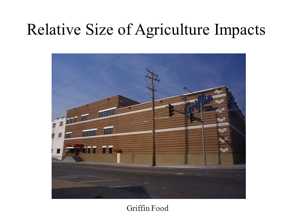 Griffin Food Relative Size of Agriculture Impacts