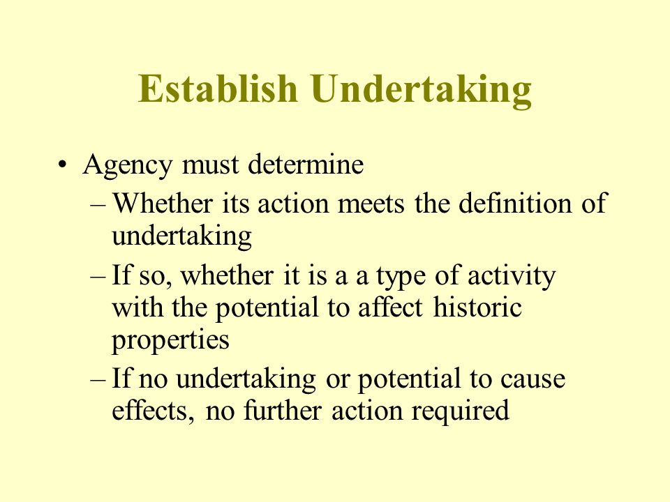 Establish Undertaking Agency must determine –Whether its action meets the definition of undertaking –If so, whether it is a a type of activity with th