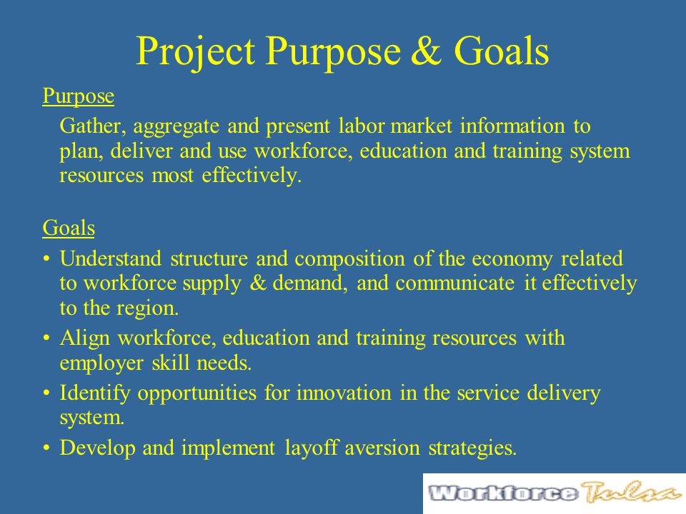 Project Purpose & Goals Purpose Gather, aggregate and present labor market information to plan, deliver and use workforce, education and training syst