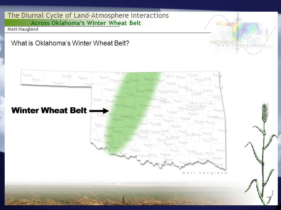 Matt Haugland Across Oklahoma's Winter Wheat Belt The Diurnal Cycle of Land-Atmosphere Interactions What is Oklahoma's Winter Wheat Belt.