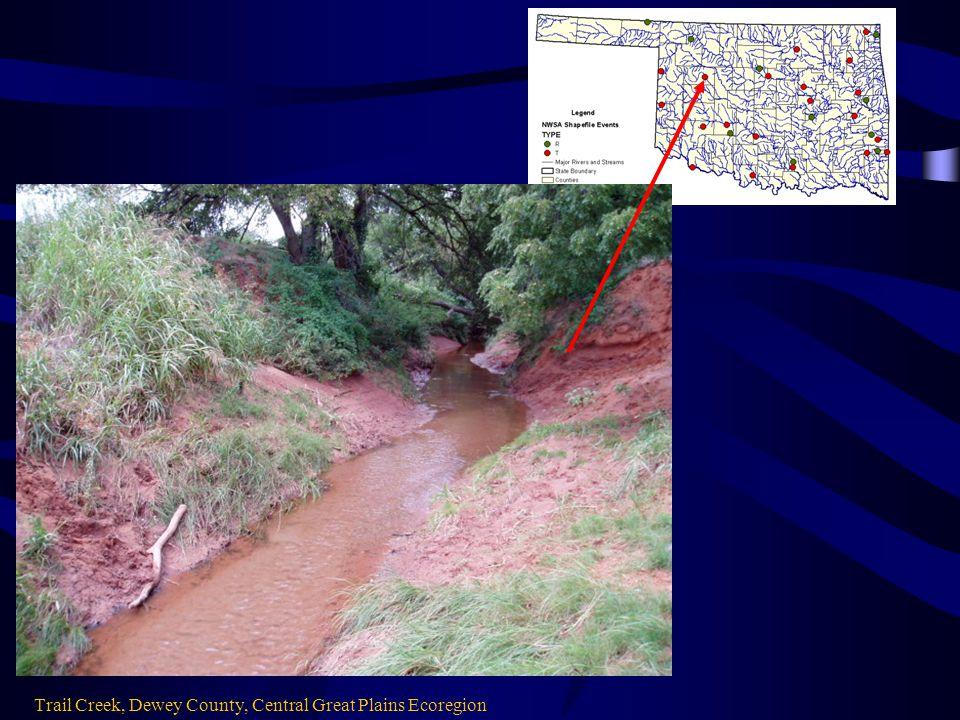 Trail Creek, Dewey County, Central Great Plains Ecoregion