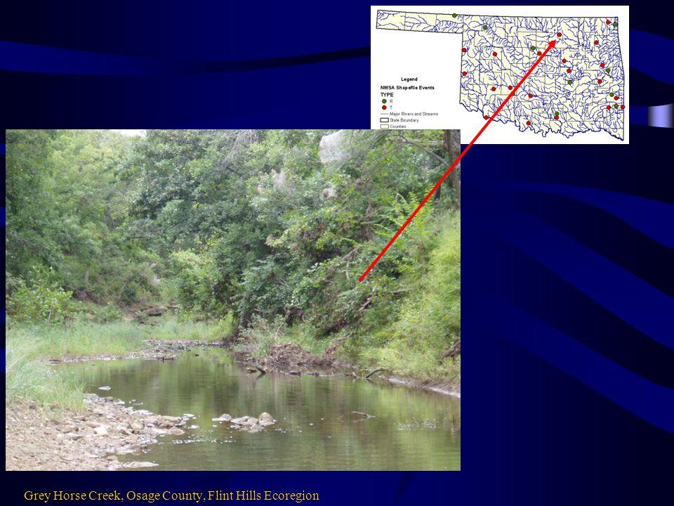 Grey Horse Creek, Osage County, Flint Hills Ecoregion