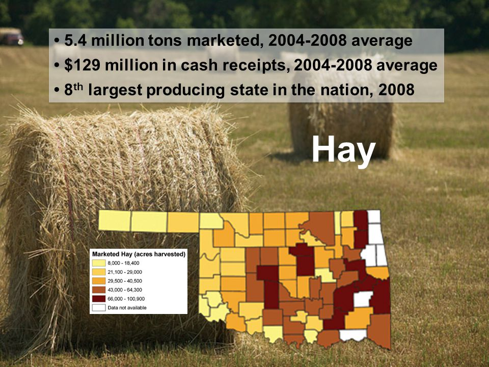 Hay 5.4 million tons marketed, 2004-2008 average $129 million in cash receipts, 2004-2008 average 8 th largest producing state in the nation, 2008