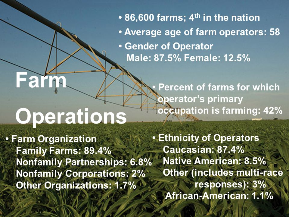 86,600 farms; 4 th in the nation Gender of Operator Male: 87.5% Female: 12.5% Average age of farm operators: 58 Farm Organization Family Farms: 89.4% Nonfamily Partnerships: 6.8% Nonfamily Corporations: 2% Other Organizations: 1.7% Ethnicity of Operators Caucasian: 87.4% Native American: 8.5% Other (includes multi-race responses): 3% African-American: 1.1% Percent of farms for which operator's primary occupation is farming: 42% Farm Operations