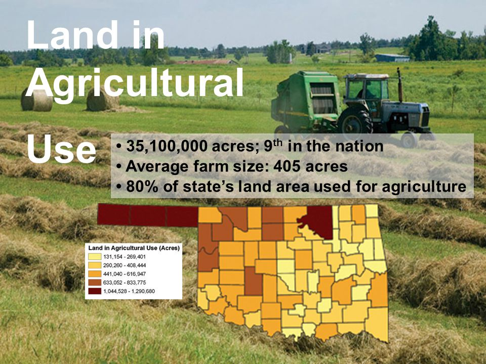 Land in Agricultural Use 35,100,000 acres; 9 th in the nation Average farm size: 405 acres 80% of state's land area used for agriculture