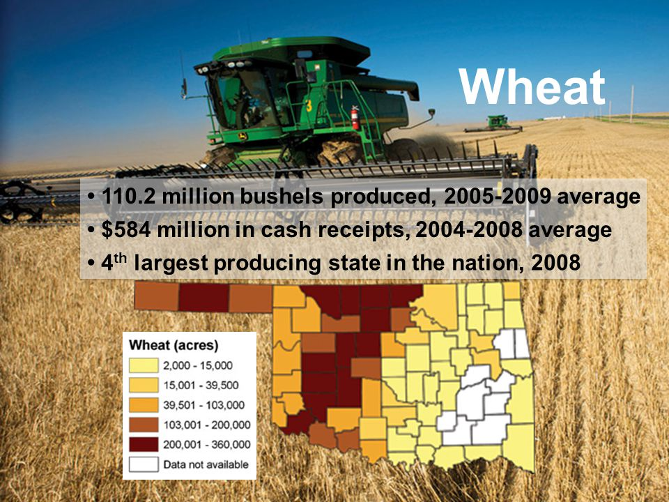 Wheat 110.2 million bushels produced, 2005-2009 average $584 million in cash receipts, 2004-2008 average 4 th largest producing state in the nation, 2