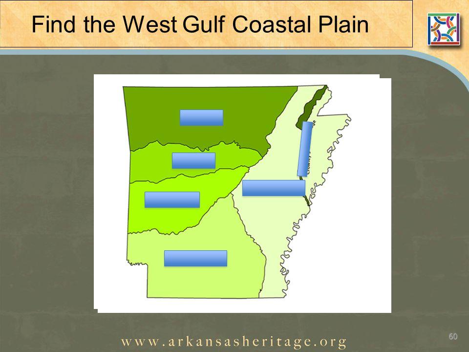 Find the West Gulf Coastal Plain 60