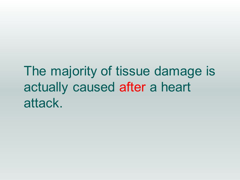 The majority of tissue damage is actually caused after a heart attack.