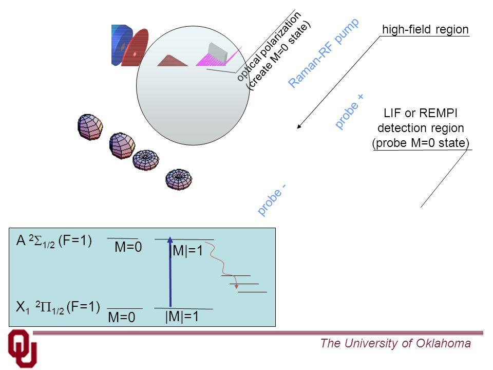 The University of Oklahoma optical polarization (create M=0 state) high-field region Raman-RF pump probe + probe - LIF or REMPI detection region (probe M=0 state) X 1 2  1/2 (F=1) A 2  1/2 (F=1)  M =1 M=0