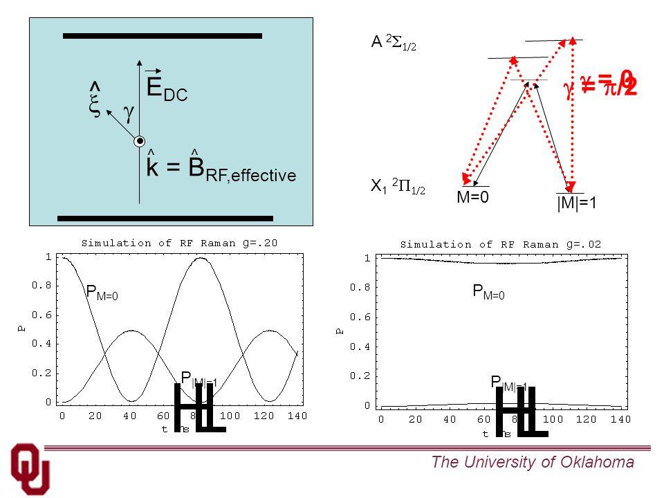 The University of Oklahoma P M=0 P  M =1 M=0  M =1 X 1 2   A 2   E DC   k = B RF,effective ^ ^^ P M=0 P  M =1  = 0  =  /2