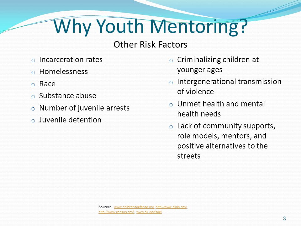 Why Youth Mentoring? Other Risk Factors o Incarceration rates o Homelessness o Race o Substance abuse o Number of juvenile arrests o Juvenile detentio
