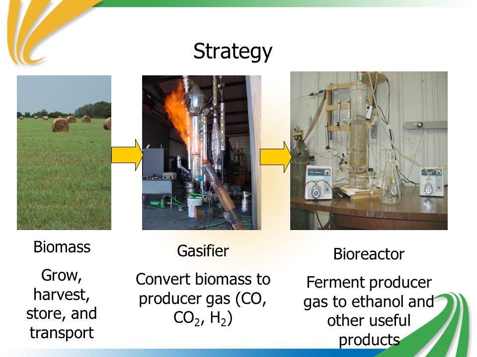 Strategy Biomass Grow, harvest, store, and transport Gasifier Convert biomass to producer gas (CO, CO 2, H 2 ) Bioreactor Ferment producer gas to ethanol and other useful products